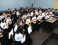 Институт культуры, музыкальные училища, многочисле