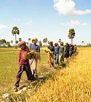 Народная Республика Кампучия. 1984-1985 годы. Часть 7. Деревни. Сельское хозяйство. Рыбаки.